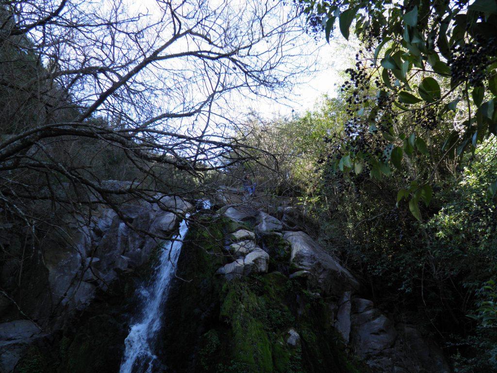 La Cascada del Águila